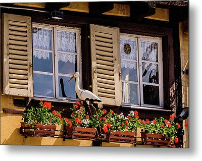 The Stork Has A Delivery - Colmar France Metal Print