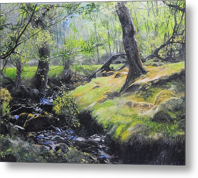 The Stream At The Farm Metal Print
