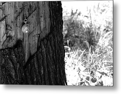 Metal Print featuring the photograph The Stump Of Time by Don Youngclaus