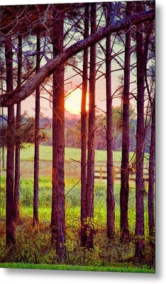 Metal Print featuring the photograph The Sun Pines Away by Jan Amiss Photography