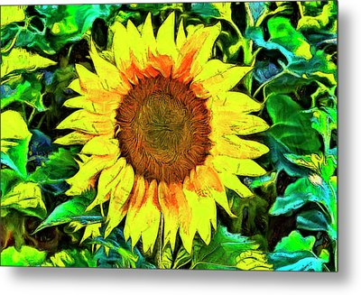 The Sunflower Metal Print by Mark Kiver