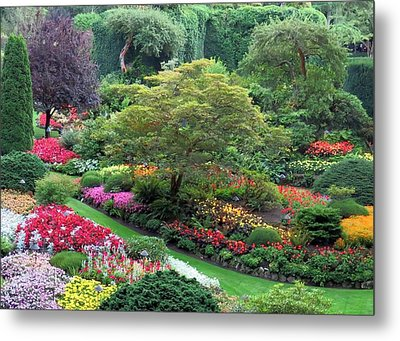 The Sunken Garden At Dusk Metal Print by Betty Buller Whitehead