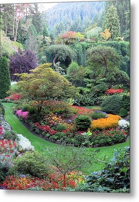 The Sunken Garden Metal Print by Betty Buller Whitehead