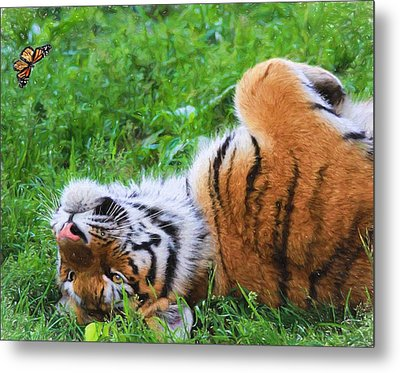 The Tiger And The Butterfly Metal Print