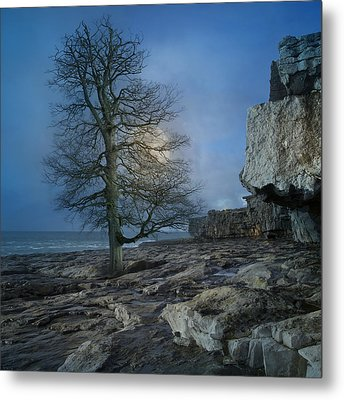 The Tree Of Inis Mor Metal Print
