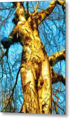 The Tree That Wanted To Be A Woman - Da Metal Print
