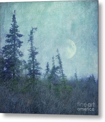 The Trees And The Moon Metal Print by Priska Wettstein