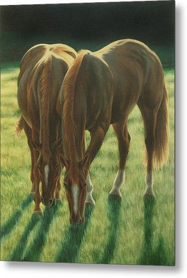 The Twins Metal Print by Karen Coombes