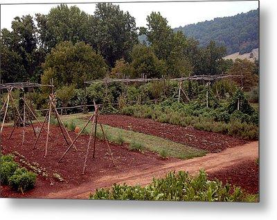 The Vegetable Garden At Monticello II Metal Print by LeeAnn McLaneGoetz McLaneGoetzStudioLLCcom