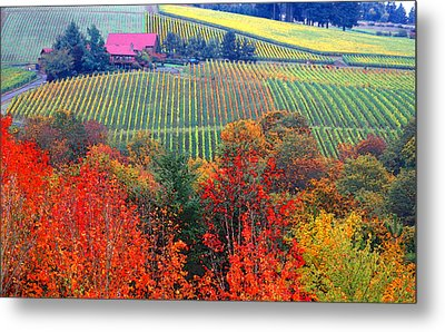 The View From Red Ridge Metal Print by Margaret Hood