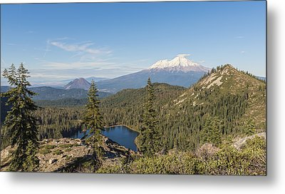 The View From The Top Metal Print by Loree Johnson