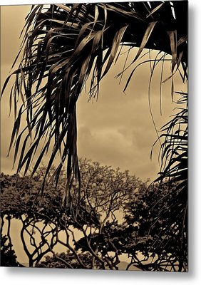 The View Metal Print by Tracey Myers