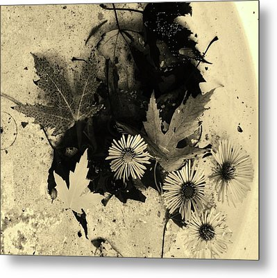 Metal Print featuring the mixed media The Waiting Pool by Mary Ellen Frazee