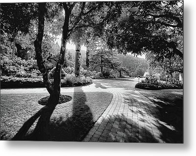 The Walkway Bw Metal Print by Lawrence Christopher