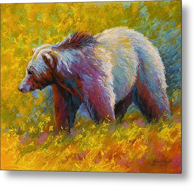 The Wandering One - Grizzly Bear Metal Print by Marion Rose