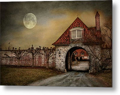 The Watcher Metal Print by Robin-Lee Vieira