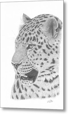 The Watchful Leopard Metal Print