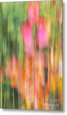 The Watercolor Garden Metal Print by Aimelle