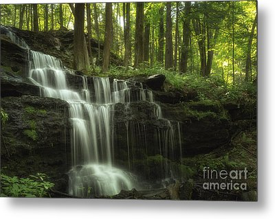 The Waterfall In The Forest Metal Print by Mary Lou Chmura