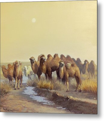 The Winter Of Desert Metal Print by Chen Baoyi
