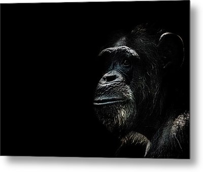 The Wise Metal Print
