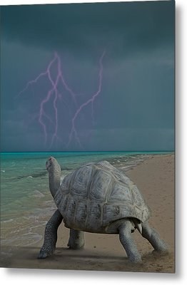 The Wonders Of Mother Nature Metal Print by Betsy Knapp