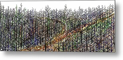 The Woods Metal Print by Tex Norman