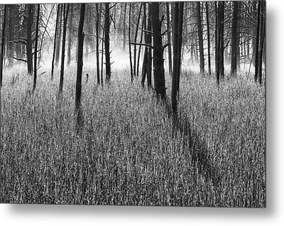 The Wrath Metal Print by Mark Kiver