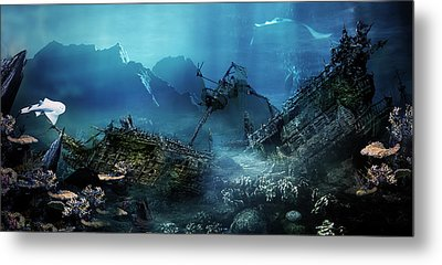 The Wreck Metal Print by Mary Hood