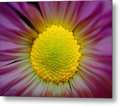 The Yellow Center Metal Print by Judy  Waller