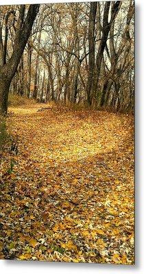 The Yellow Leaf Road- Version II  Metal Print by Scott D Van Osdol