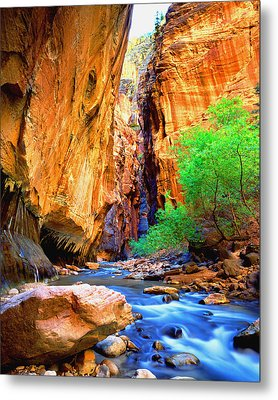 The Zion Narrows Metal Print