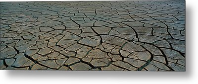 This Is A Pattern In Dry, Cracked Mud Metal Print by Panoramic Images