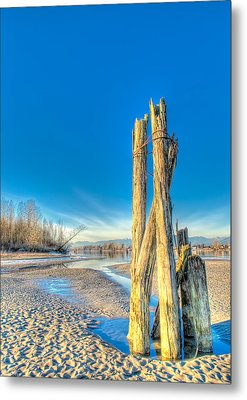 This Is British Columbia No.43 - Frost On The Fraser Metal Print by Paul W Sharpe Aka Wizard of Wonders