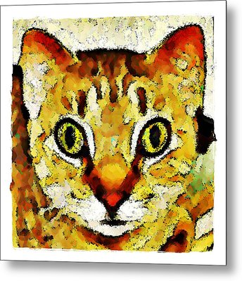 This Is My Surprised Face Kitty Metal Print by Terry Mulligan