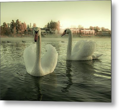 This Is Purity And Innocence Metal Print