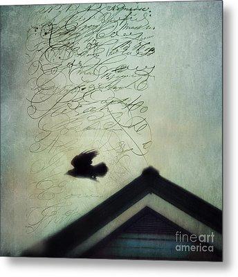 This Roof Is My Home Metal Print by Priska Wettstein
