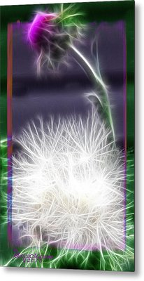 Metal Print featuring the photograph Thistle by EricaMaxine  Price
