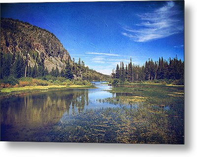 Those Summer Days Metal Print by Laurie Search