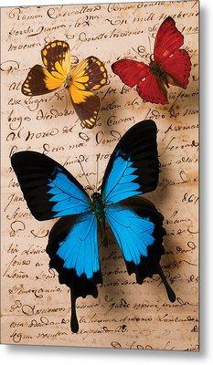 Three Butterflies Metal Print by Garry Gay