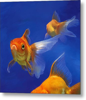 Three Goldfish Metal Print by Simon Sturge