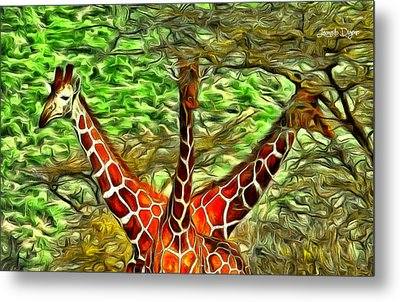 Three Heads Giraffe - Pa Metal Print