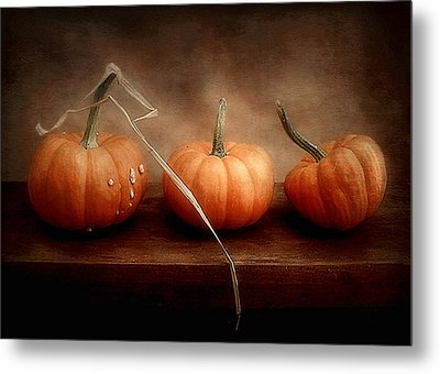 Three Little Pumpkins Metal Print