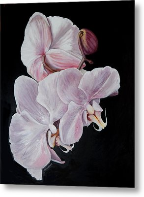 Three Orchids Metal Print by Sandra Nardone