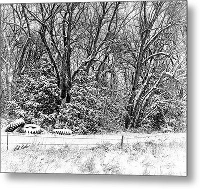 Metal Print featuring the photograph Three Tires And A Snowstorm by Bill Kesler