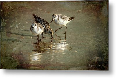 Three Together Metal Print by Marvin Spates