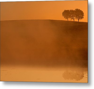 Three Trees  Metal Print by Don Spenner