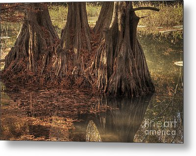 Metal Print featuring the photograph Three Trees In Lake Murray by Tamyra Ayles