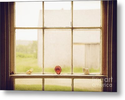 Metal Print featuring the photograph Three Window Shells by Craig J Satterlee
