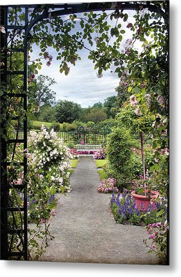 Through A Rose Pergola Metal Print by Jessica Jenney